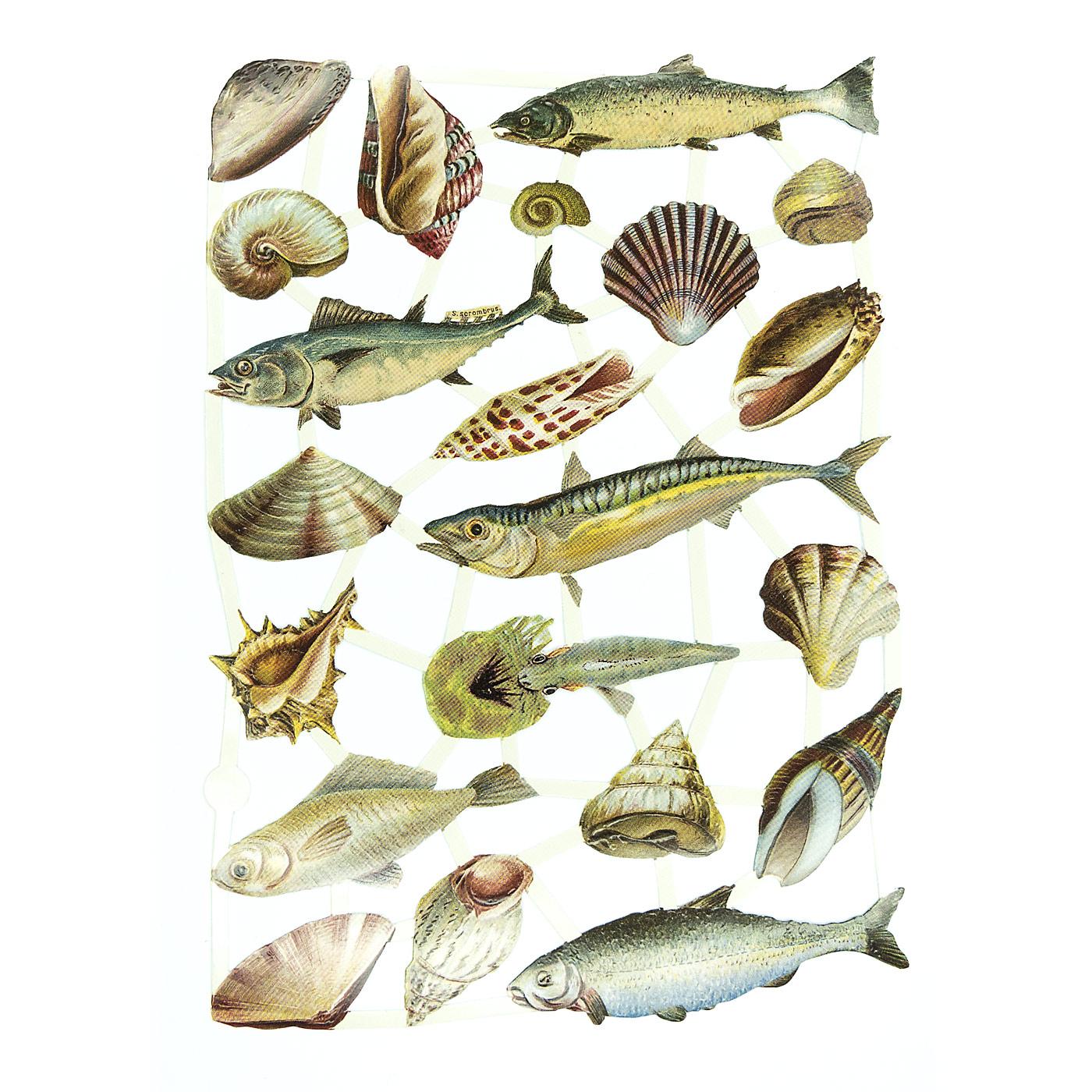 Glanzbilder fische pop up papier - Fische basteln aus papier ...